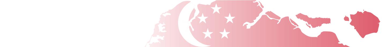 Singapore Tax Filing