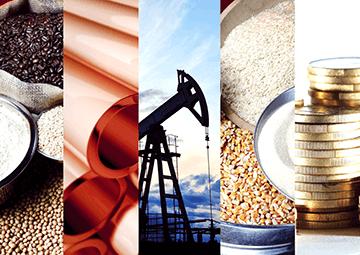 Commodity Derivatives Segment