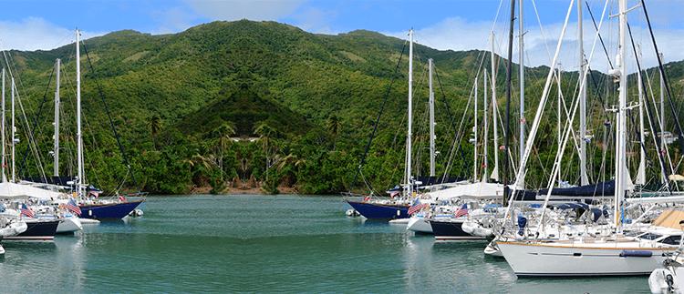 British Virgin Islands Business Company