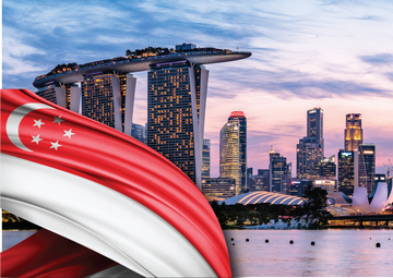 Celebrating - Singapore National Day Enjoy 20% off for all One IBC's Services