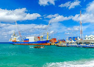 Main Characteristics of Cayman Company